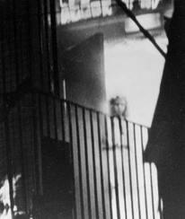 Le fantôme du Town Hall Shropshire dans dame blanche images-65