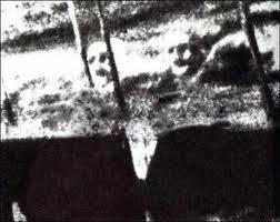 Les mystérieux visages du SS Watertown ss-watertown